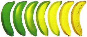 бананы степени зрелости...