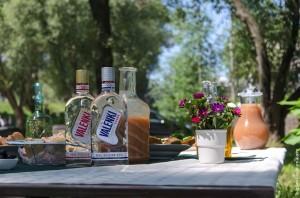 vodka-valenki
